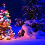 crypto activity 2020 Christmas